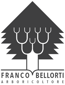 Franco Bellorti